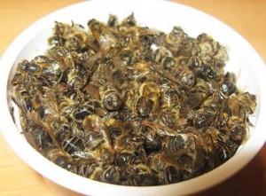 Подмор пчелиный лечение суставов