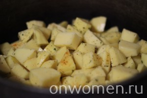 tushenaya-baranina-s-kartofelem7