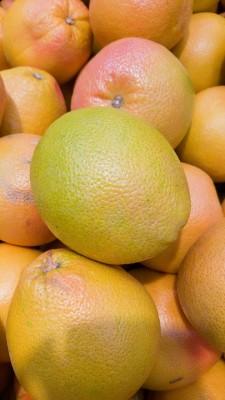Грейфруты