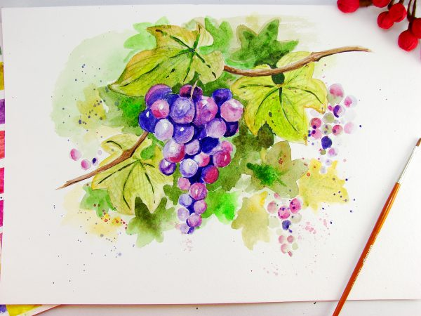 Виноград акварелью