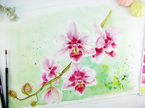 Орхидея акварелью
