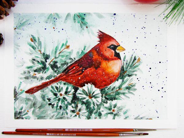 Птица кардинал акварелью