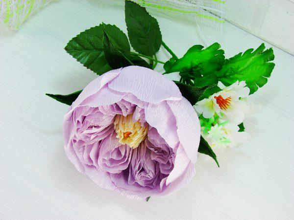 Роза Остина из гофрированной бумаги