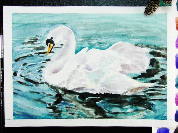 Лебедь акварелью