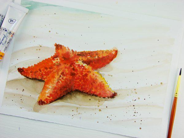 Морская звезда акварелью