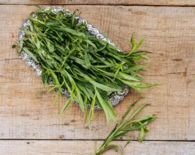 Эстрагон (тархун): свойства, применение приправаы, в какие блюда добавляют