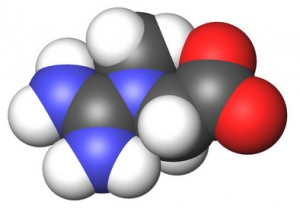 высокое количество лейкоцитов в моче при беременности