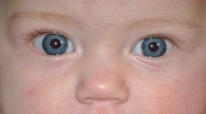 Что должен уметь ребёнок в 9 месяцев