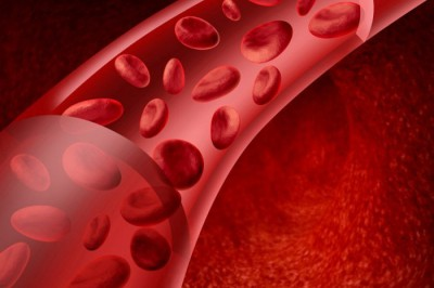 Анализы для лейкоза у