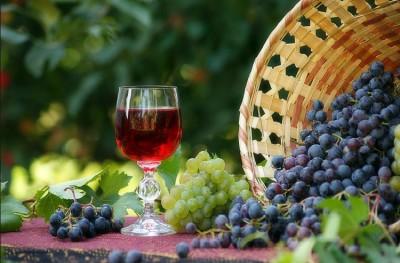 Как сделать вино из винограда в домашних условиях без сахара