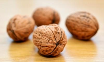 Грецкие орехи в рационе малышей: «за» и «против»