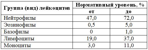 lejkocity-table