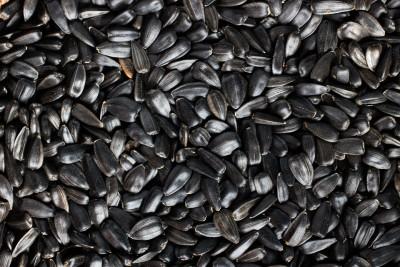 Как пожарить семечки в духовке: рецепты с солью и без