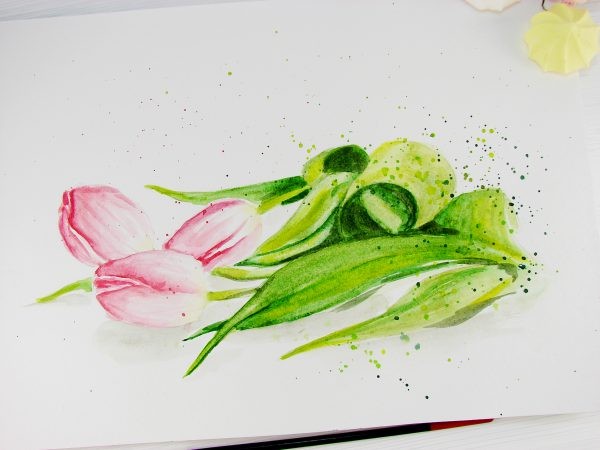 Тюльпаны акварелью