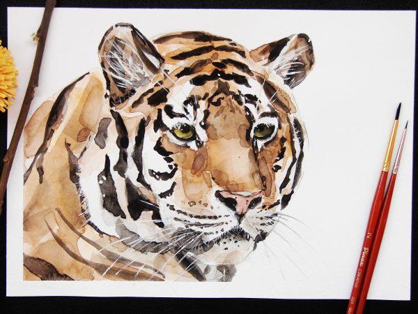 Тигр акварелью