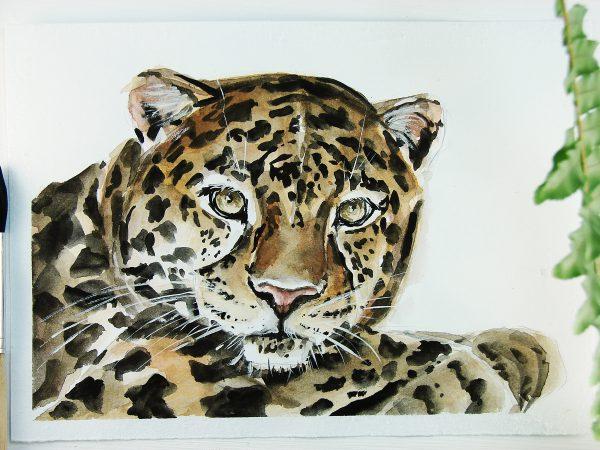Леопард акварелью