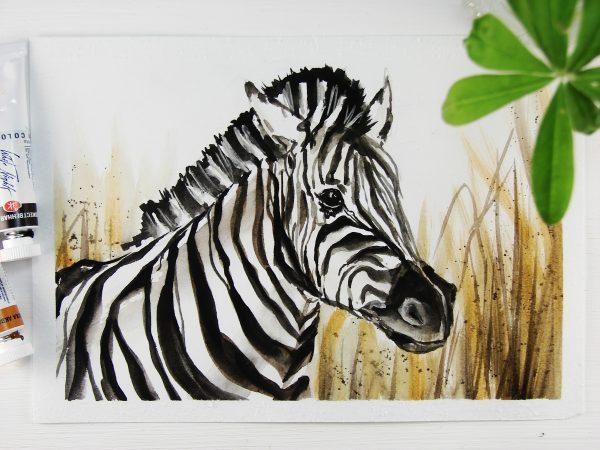 Зебра акварелью